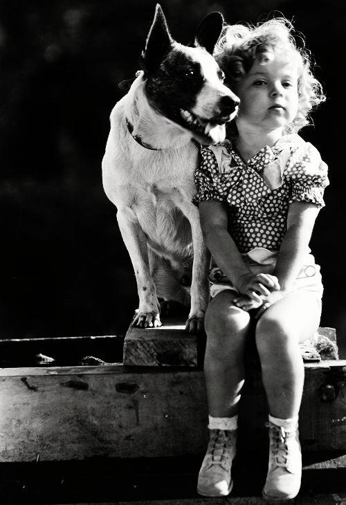 shirleydog