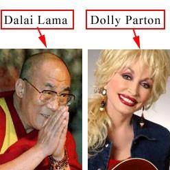 dalai dolly