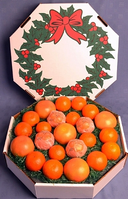 christmas-oranges